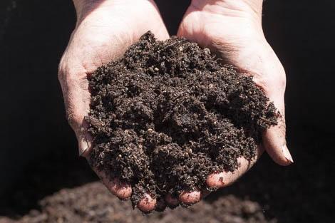 Минеральные удобрения Беларусь Удобрения купить в Минске
