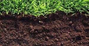 почва для растений удобрение земли