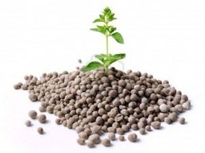 виды азотних удобрений