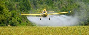 пестициды гербициды инсектициды фунгициды
